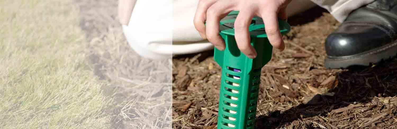 Atlantic Pest and Termite Management Inc.