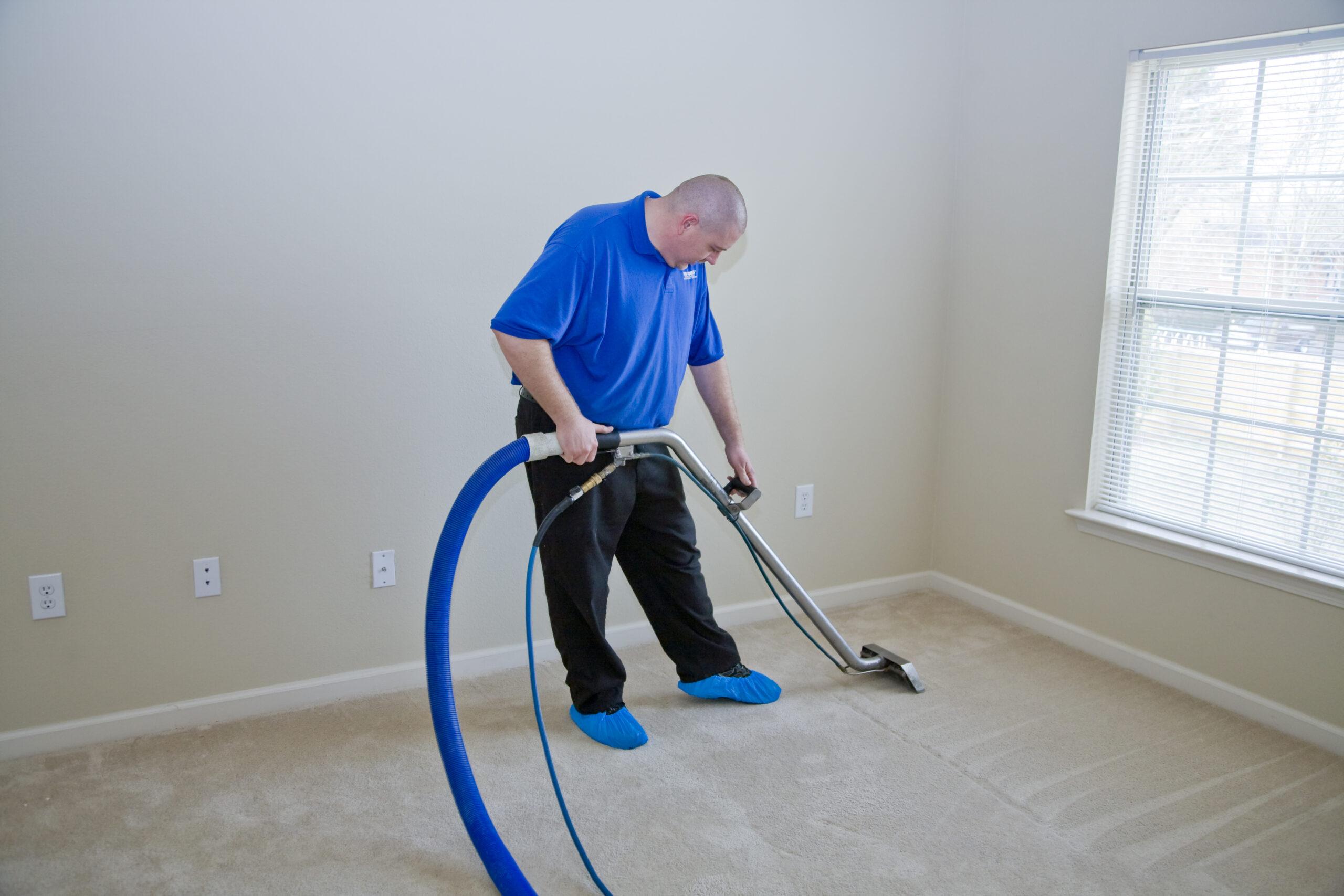 Carpet Cleanse