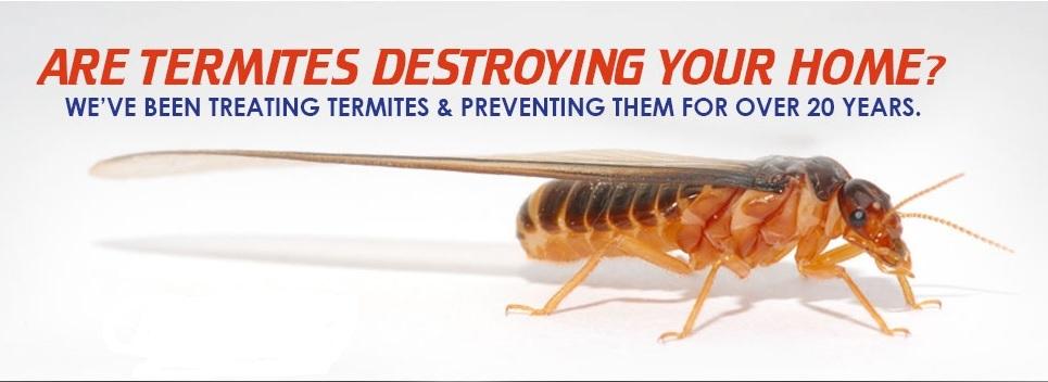 Allpro Pest Management Inc